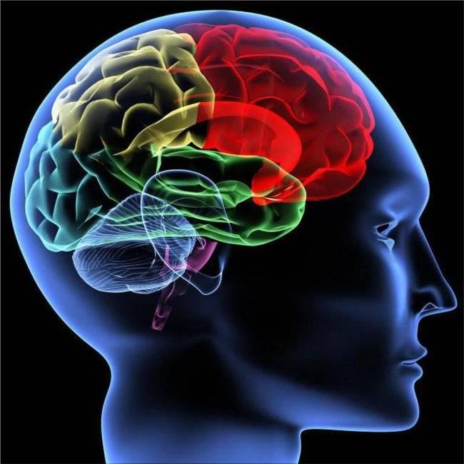 препараты улучшающие память и внимание
