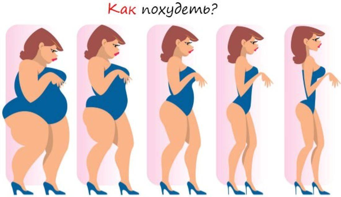 диеты эффективные для похудения в домашних шампуней