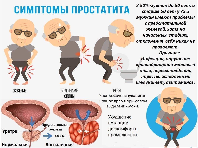 Простатит связь с кишечником простатит аденома прибор для лечения простатита