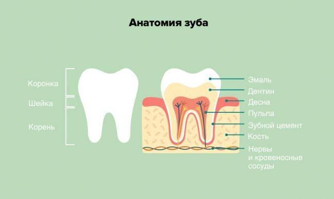 Что нельзя делать если болит зуб